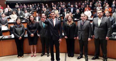 Designa Senado nuevo titular de la Fepade