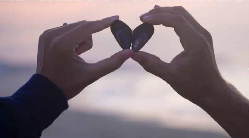 """""""Necesito el amor verdadero"""""""
