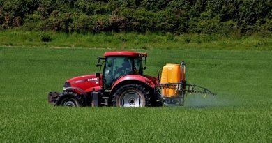 Los subsidios al azúcar de EU traen una marea roja de algas a las costas de Florida