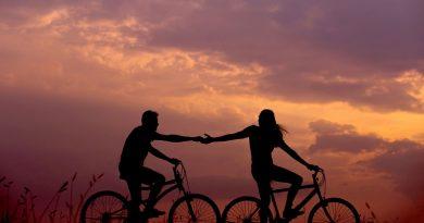 El papel de los afectos