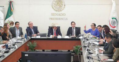 Nuevo intento en el Senado para designar titular de la CRE