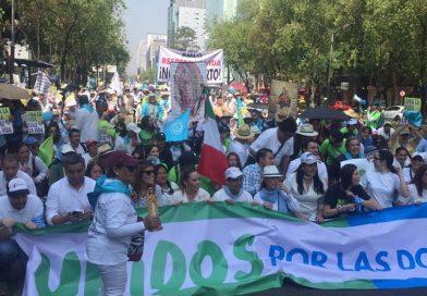 Realizan Marcha por la Vida; exigen parar leyes abortistas en México