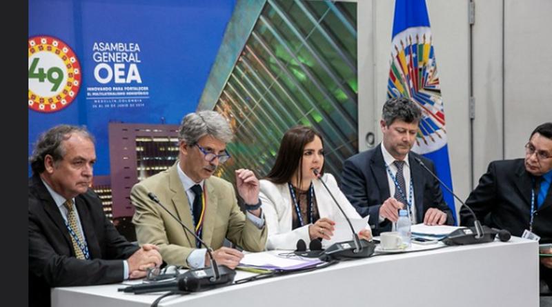 Jóvenes Provida entregarán Declaración a 49 Asamblea de la OEA