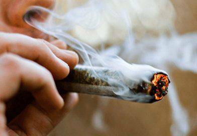 Legalización de la marihuana en México dañará la salud pública