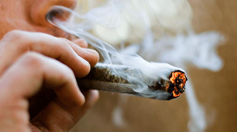 Los motivos de la marihuana