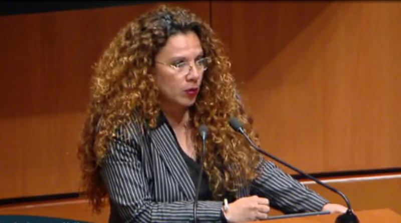 senadora Rocío Adriana Abreu Artiñano, del Movimiento de Regeneración Nacional (Morena)