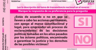Es el INE como autoridad del Estado quien tiene la facultad exclusiva para difundir información relacionada con ese ejercicio ciudadano, aclara.